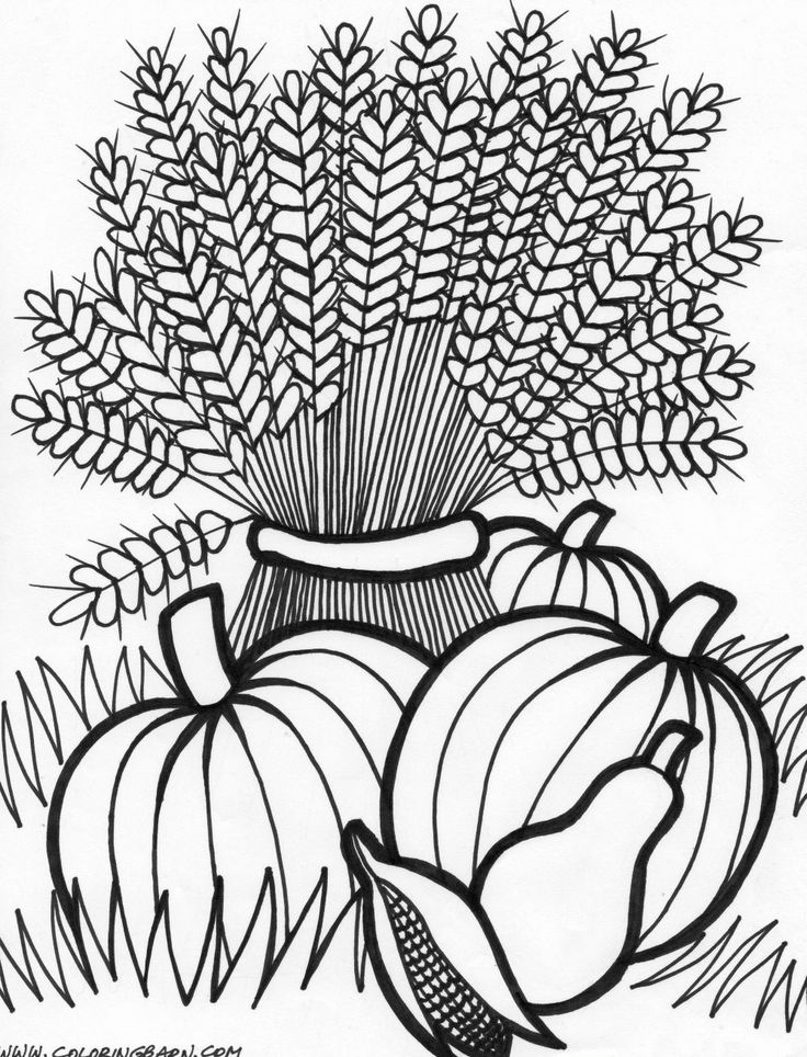cornucopia coloring page google search - Fall Coloring Pages For Kids