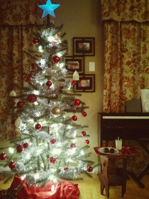 Whipet pour le Père Noël cette année !