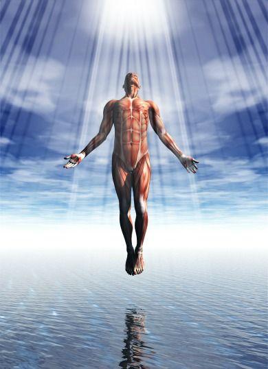 Ascension Adam - The ascension of Adam represents the origin of mankind and our story of creation. In the beginning this direct reflection of the One was gifted all the elements for creating. This high being could, through remote viewing its own thoughts use the ability of remote influencing to manifest them into reality instantly. They would project into his awareness through the perception of time and space but the process of manifestation was started as it was thought of.