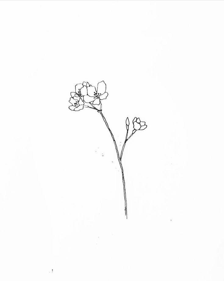Wild Flower 3 Black And White Flower Tattoo White Flower Tattoos Line Art Tattoos
