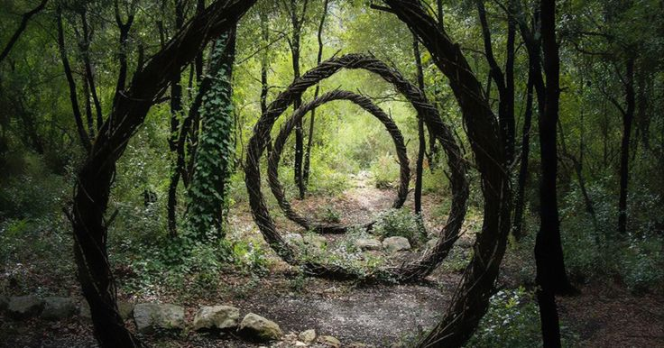 Artist Spent One Year In The Woods Creating Surreal Sculptures From Organic Materials | Bored Panda
