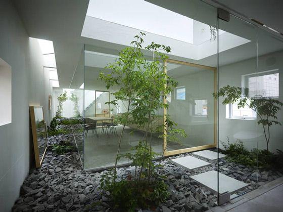 Idées pour créer un jardin d\'intérieur dans votre maison