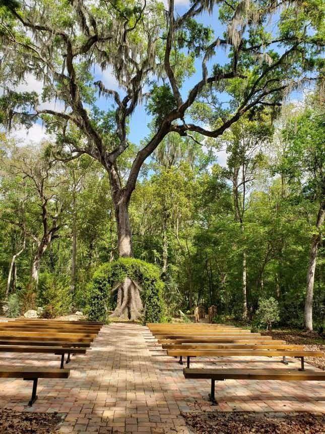 Saxon Manor Weddings and Shabby Chic Barn Tampa Bay ...