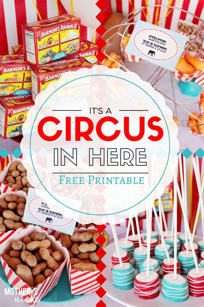 Circus Party with Printables                                                                                                                                                                                 More