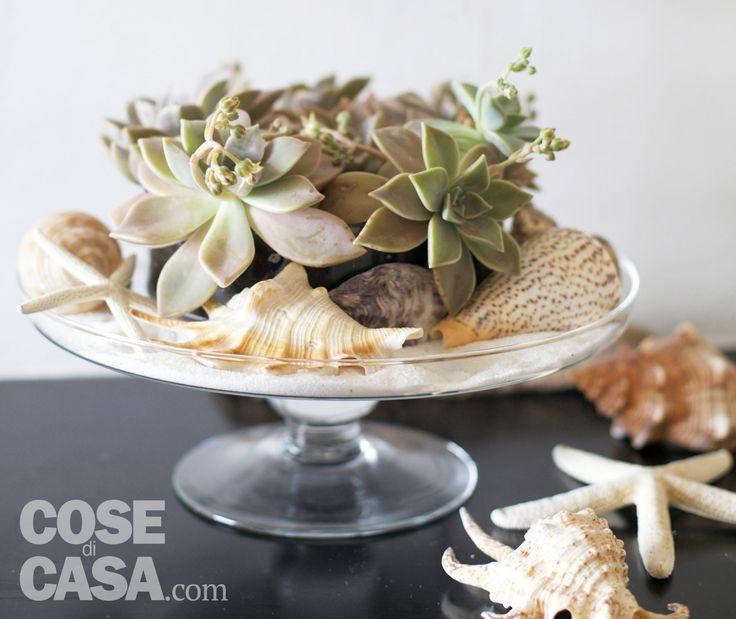 Conchiglie ed elementi vegetali si uniscono per creare una fresca composizione dal sapore di mare che decora la tavola, arreda la casa, il giardino o il terrazzo, o può essere un dono gradito e originale.