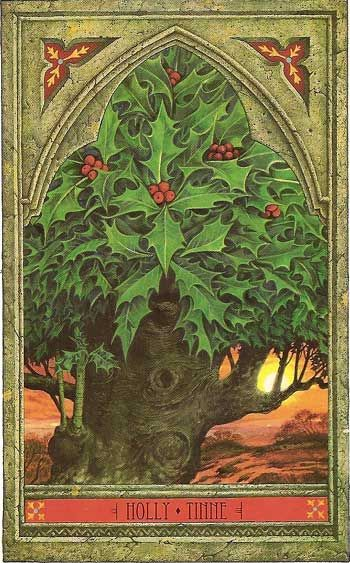 "The Holly and the Ivy Tree. The Greenman essence of Holly can help with any negative emotions because it possesses a ""power of peace."""