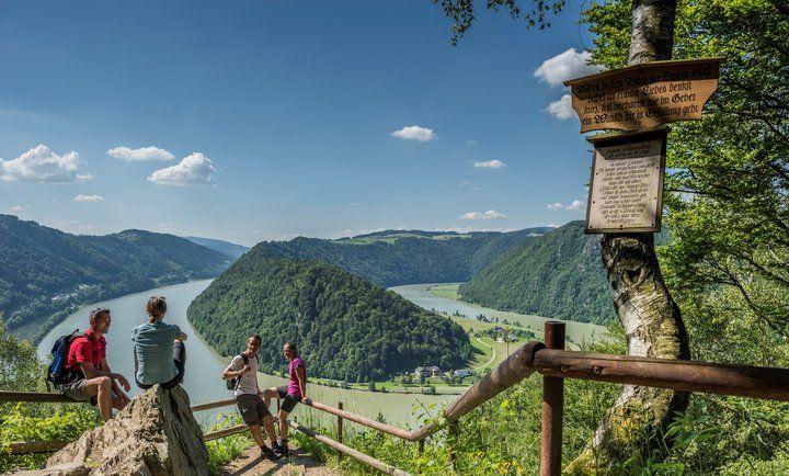 Hiking the Danube. Donausteig with a view on Schlögener Schlinge © WGD Donau Oberösterreich_Hochhauser