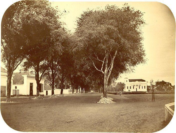 """Het """"Hooge pad"""" een straat in Makassar, circa 1900."""
