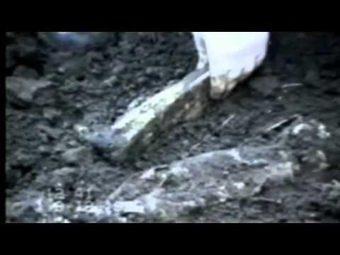 Nevysvětlitelné záhady - kanibalství CZ HQ - YouTube
