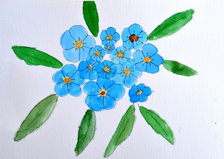 69 best forget me not images on pinterest forget me not draw flowers art project for kids pencil art a flower art techniques a blog art projects colored pencils art crafts ccuart Image collections