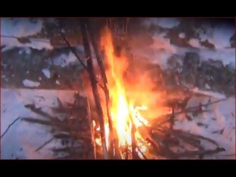 Мороз в тайге -50   Борьба за жизнь. Джек Лондон описывал в произведении...