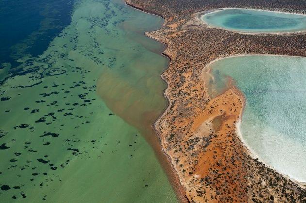 Shark Bay, Peron Peninsula, Western Australia
