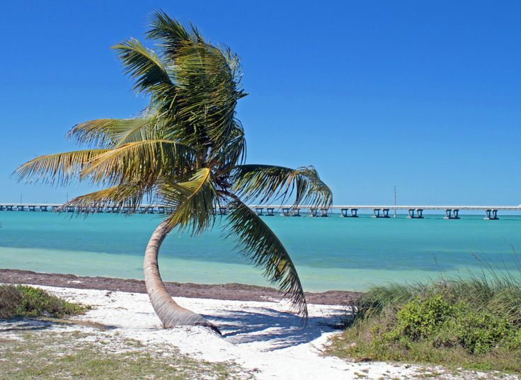Follow U.S. Highway 1 from Miami to the Florida Keys using our guide to the attractions and worth-while stops, mile marker by mile marker.