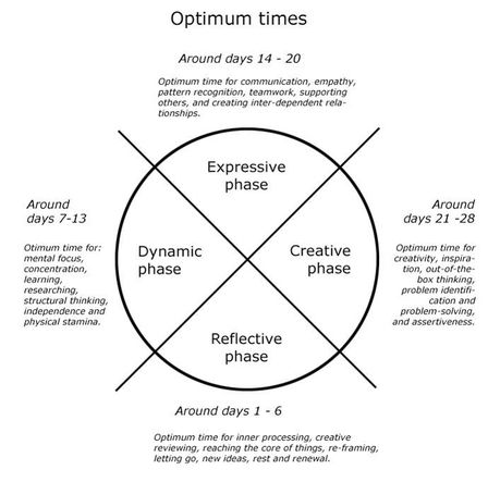 Phases of the Menstrual Cycle - Miranda Gray (http://www.theoptimizedwoman.com)