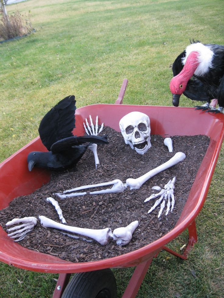 Wheelbarrow of Bones A wheelbarrow, some dirt, a few old skeleton bones, and a few carnivorous birds is all that it takes to create this humorous display for your DIY Halloween decorations. Not everyone has an extra vulture sitting around their house, so you may have to purchase one from a local Halloween store, along with a full skeleton and feathered black crow. The dirt or mulch can be found at many home improvement stores and may be readily available from your own yard.