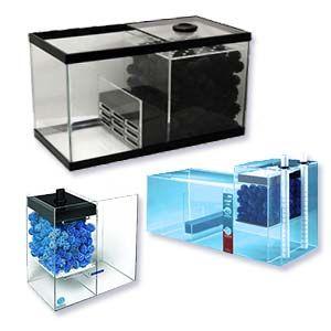 Filtro Seco Húmedo para acuario marino - El filtro seco húmedo resulta muy eficiente en un acuario marino pero no es aconsejable en peceras de agua salada para principiantes.