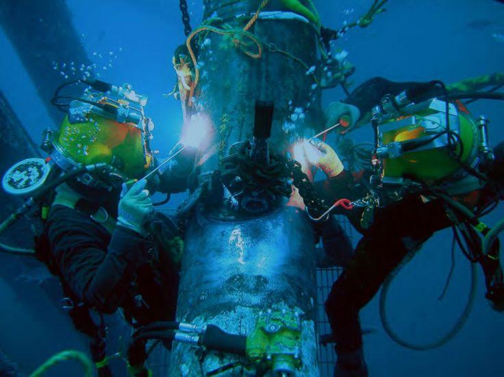 diving Image Source https//diversacademyinternational