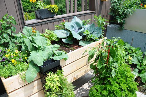 Réalisez votre propre table potagère - Du jardin dans ma vie