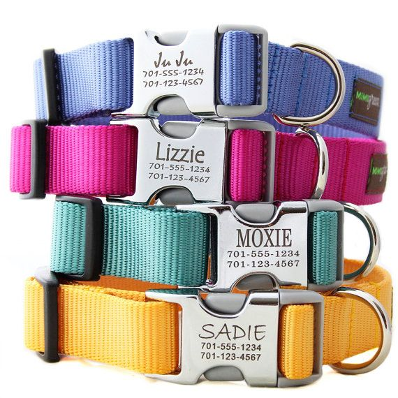 Dog collars w/ name. No more jingle from the dog tag!!