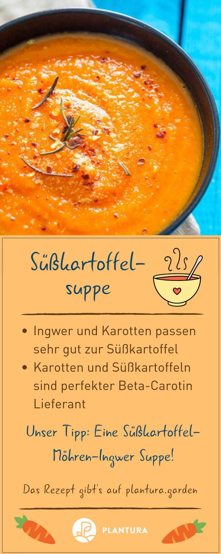 Süßkartoffel Rezepte: Pommes, Püree, Suppe & Auflauf