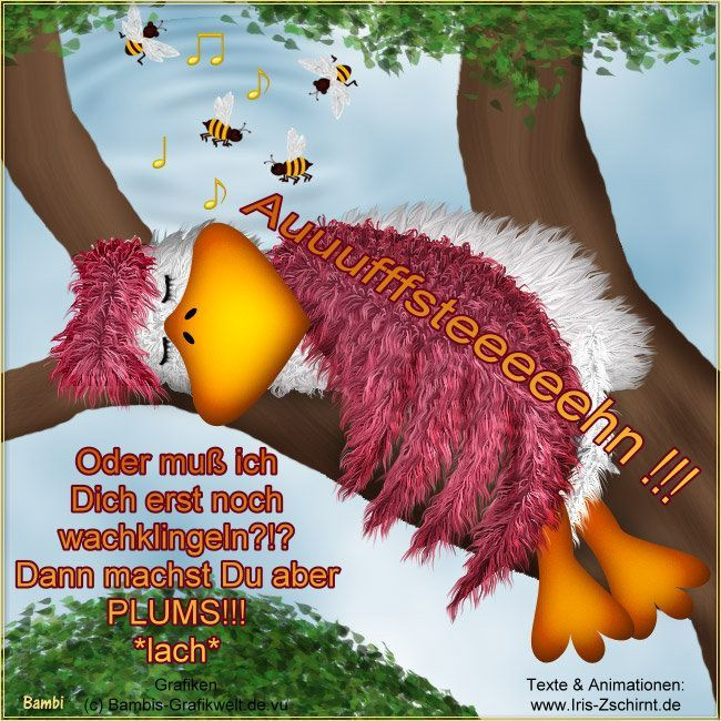 Wünsch euch eine gute Nacht - http://guten-abend-bilder.de/wuensch-euch-eine-gute-nacht-49/