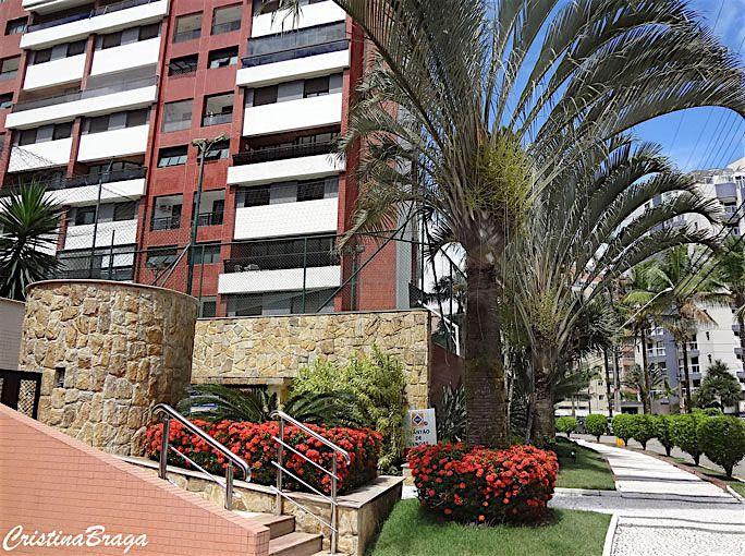 Palmeira Triângulo – Dypsis Decaryi - Palmeira com folhas pinadas, eretas, arqueadas, de cor azul-acinzentada ...