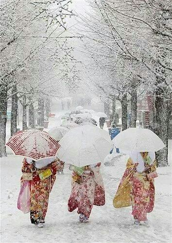 Love the colourful clothes in the white, white snow!