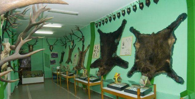 Muzeul de Ştiinţele Naturii din Vatra Dornei a fost inaugurat în anul 1957. În acest muzeu sunt prezentate vizitatorilor bogăţile naturii din Ţara Dornelor. În expoziţie pot fi întâlnite familii de cerbi şi căpriori, urşibruni, vulturul pleşuv brun, cocosul de munte, cocoşul de mesteacăn, precum şi multe specii de păsări şi manifere.