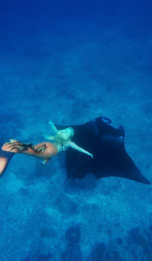 Real life Mermaid Melissa http://MermaidMelissa.com Mermaid and Manta Rays