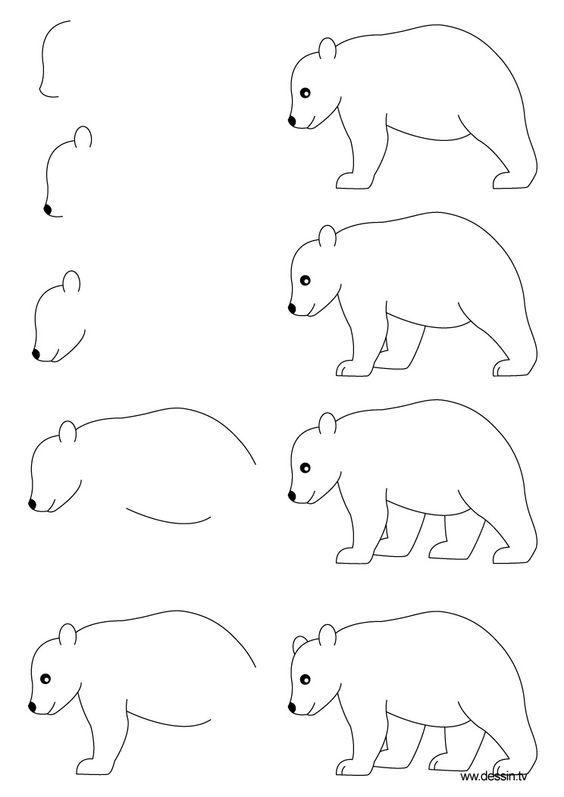 cómo dibujar paso a paso    aprender a dibujar un oso con simples instrucciones paso a paso: