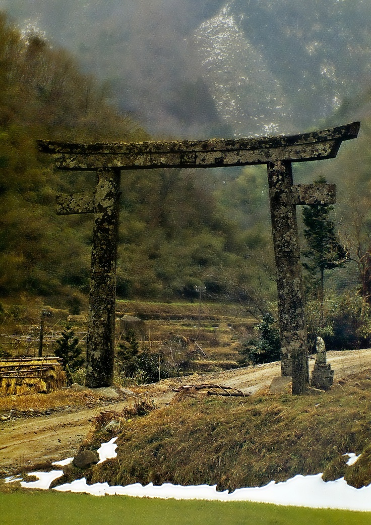 39 best images about japanese torii gates on pinterest for Japanese gates pictures