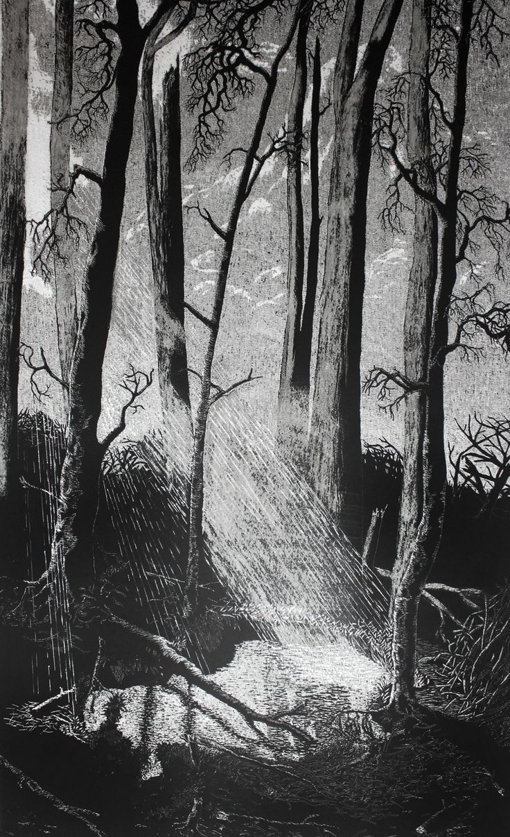 Composition XI, 2012 Ink on paper, hand carved  (40 x 100 cm) Bundaberg Regional Art Gallery collection, Australia, 2014 1st Prize Clayton Utz Art Award, 2013