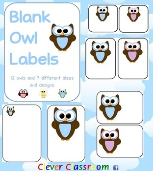 Owl Themed Blank Classroom Labels - PDF file48 pages, designed by Clever Classroom.These basic, blank owl templates can be used as labels t...