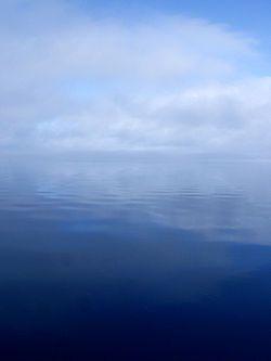 Water vapor condensed in clouds