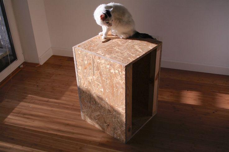 skrzynia z OSB. sekiwmiescie.pl CrossFit box. #crossfit #box #osb #skrzynia #diy #sekiwmiescie #cat kot #woodwork