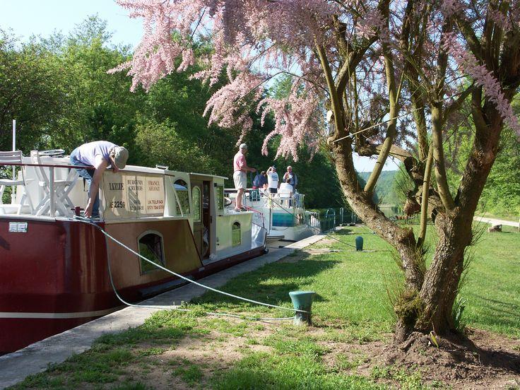 Petit arrêt fleurit sur les bords du canal du Nivernais dans l'Yonne en Bourgogne.