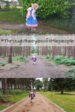 #throughtheeyesoflittlepeople - reviewing a fab backpack and reins set on a adventure with Boo