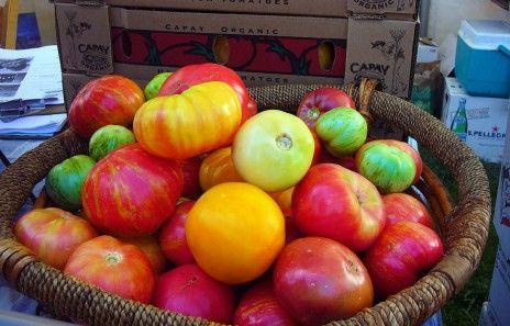 Oui, l'agriculture biologique peut nourrir la planète - Rue89 - L'Obs