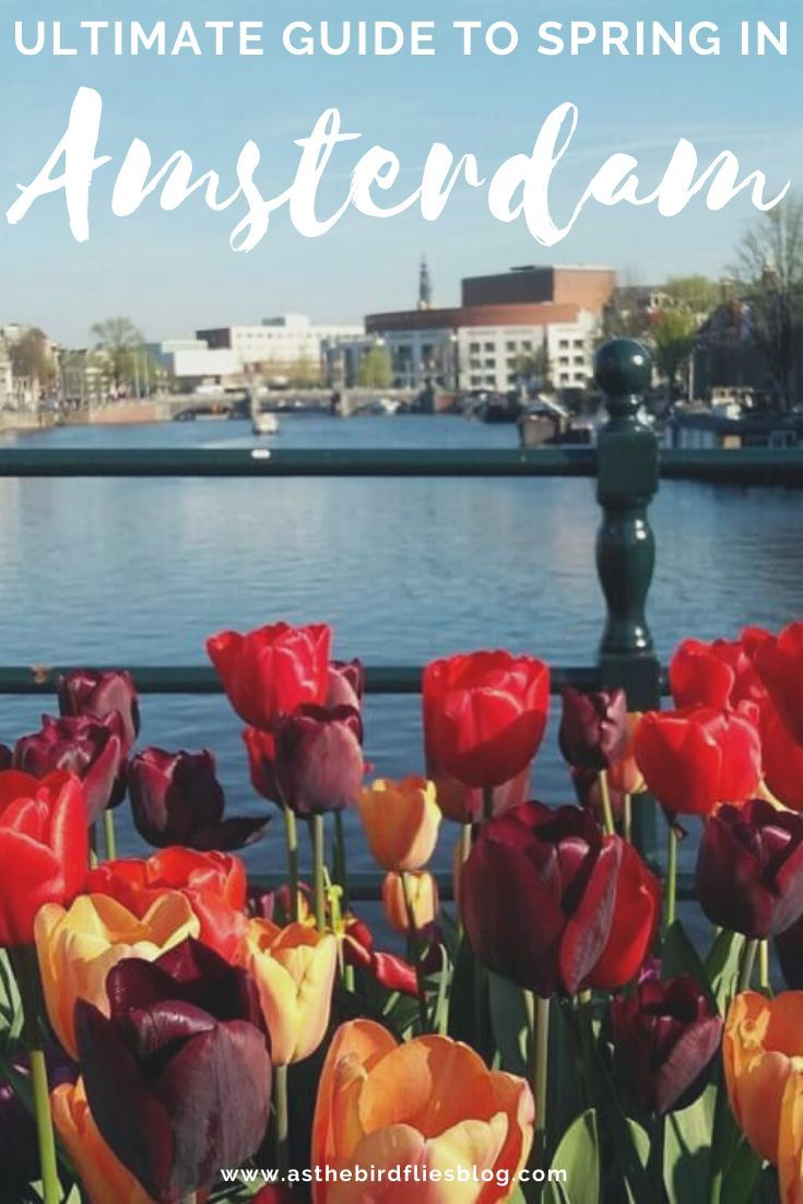 Spring Is A Beautiful Time To Visit Amsterdam Not Least Thanks To