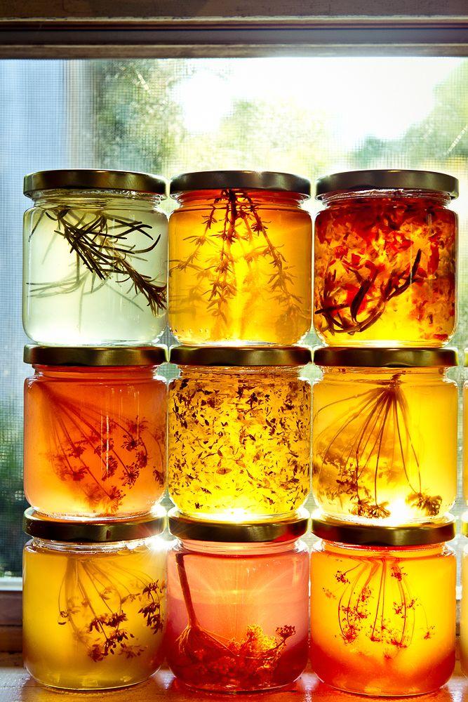 Herb Infused Honeys