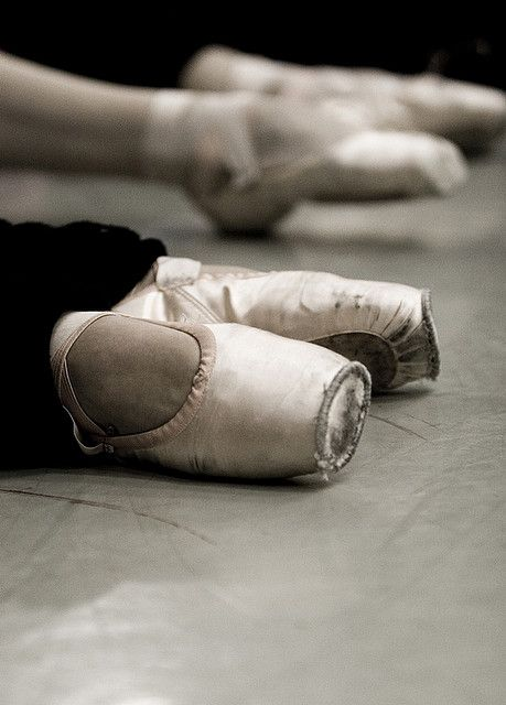 pointePoint Toes, Dance Art, Point Shoes, Ballet Dancers, Ballet En Point, Toes Shoes Ballet, Ballet Shoes, Point Dance, Ballet Rehearal