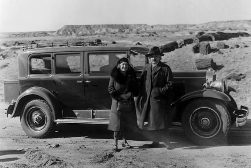 Einstein tours fossilized trees at Petrified Forest National Park in 1931.