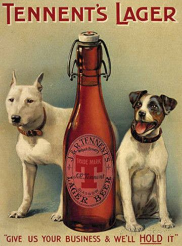 Tennents Lager Tin Sign at AllPosters.com