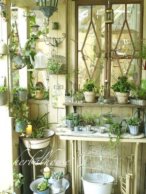 Shabby House Herbal Garden