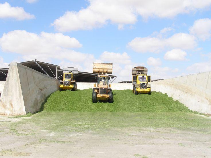 Most Popular Grain Silos In Australia Silos Grain Silo Farming Simulator 2015