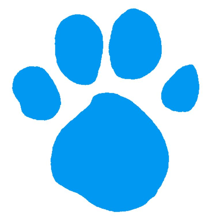 blues light blue pawprint blues clues pictures and png
