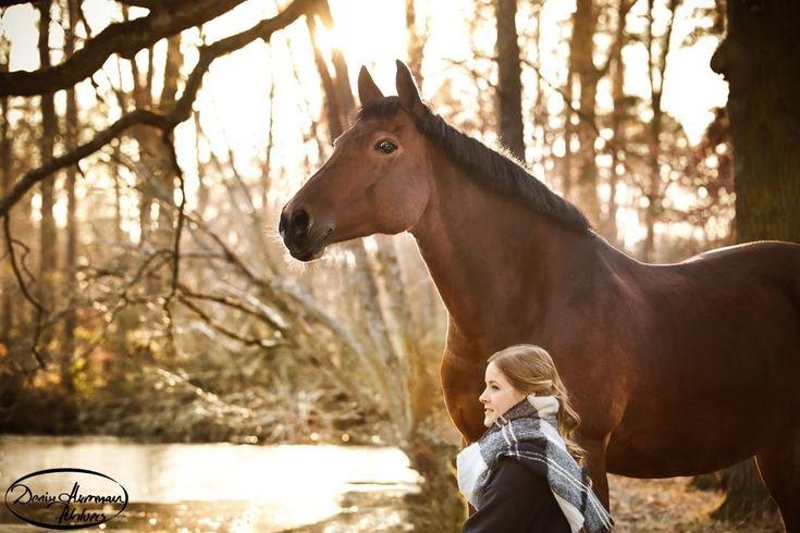 Liebe Zofia, mir fehlen die Worte angesichts dieser einzigartig wundervollen Stimmung. Das Shooting mit euch war einfach wundervoll. Zofia und ihr Deutsches Reitpony Pfalz-Azita #horses #horselove #equinephotography# #nature #love #passion #pony #pferde #liebe #pferdeshooting #horselove #equinephotography #autum #nature #woods #love #pony #pferde #liebe #pferdeshooting #pferdefotografie #wald # #horsesofinstagram #instahorse #pferdeschoenheiten #horseofinstagram #naturephotography…