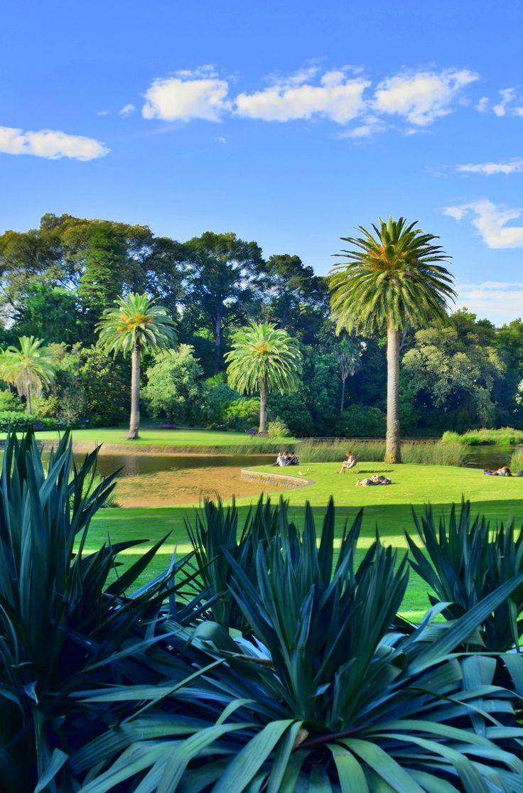The Royal Botanic #Gardens in #Melbourne is a popular place where both locals and visitors can enjoy outdoor recreation and a relaxing natural environment.  Click pin through to post for more ideas on things to do in Melbourne #Australia.