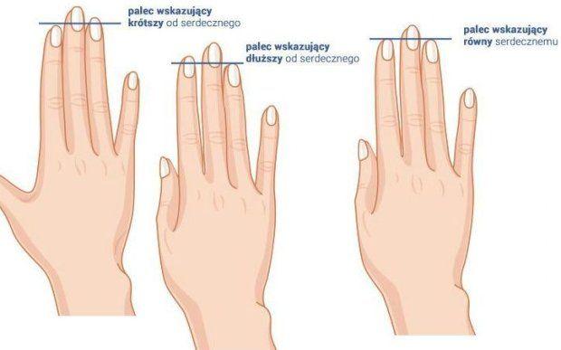Zmierz długość palców