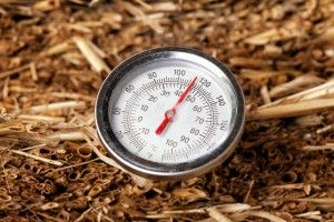 compost thermometer in straw bale